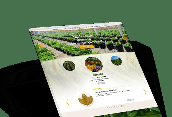 HEKAGRO | Web Tasarım