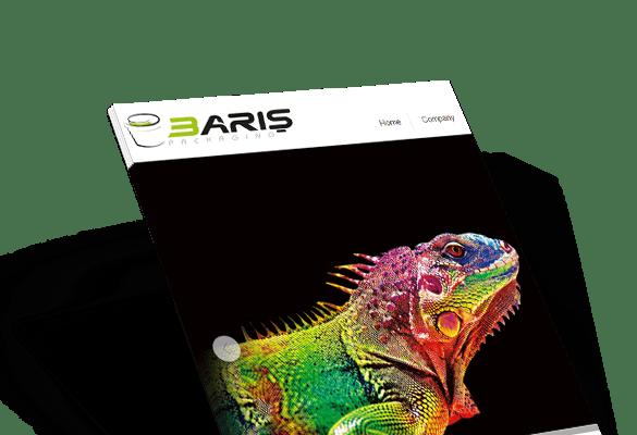 BARIŞ AMBALAJ | Web Tasarım